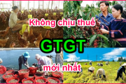 nhung-doi-tuong-mat-hang-khong-chiu-thue-gtgt-moi-nhat.-2-39krw2jmct1ocqwgcincao.png