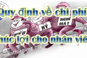 quy-dinh-ve-chi-phi-phuc-loi-cho-nhan-vien.-39l2u12xdvuvcih6f8u03k.png